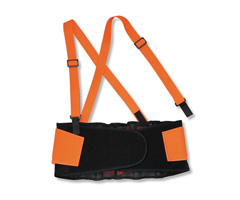 ProFlex® 100 Economy Hi-Vis Back Support, Orange, Large